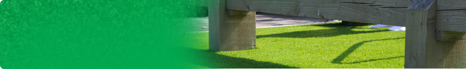 Why Artificial Grass