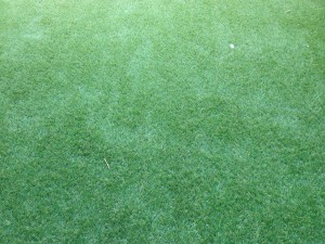 artificial turf from Grass Greener