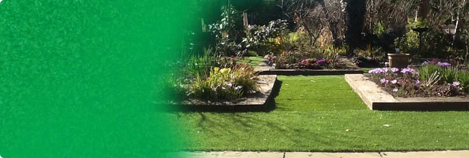 Perfect lawn options for you